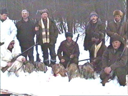 Конец банды серых разбойников. Охота на волков в Чувашии.