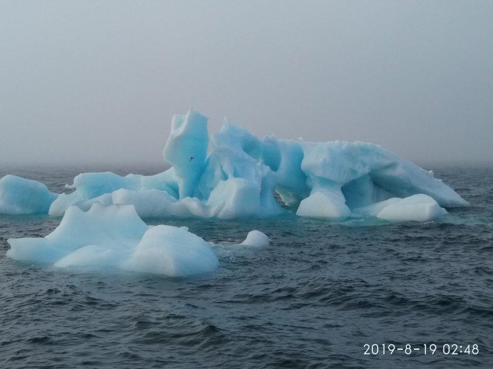 Ледяной горою айсберг, из тумана вырастает...