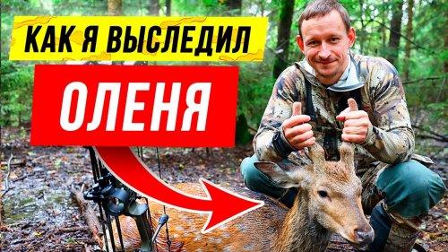 Deer bow hunting | Deer hunting with the Mathews VXR (eng sub) | Охота на оленя из лука MATHEWS VXR