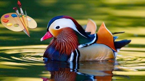 Реставрация, покраска утиных чучел. Чем красить чучела? Duck Decoy Repair.
