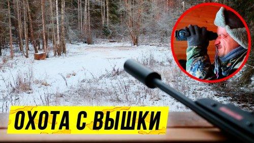 Охота с вышки зимой | 5 часов на охотничьей вышке: выводы