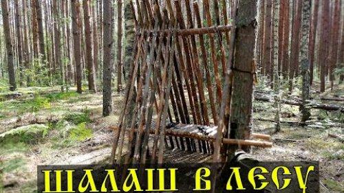 ШАЛАШ  в лесу своими руками \ Укрытие из валежника