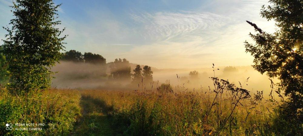 Раннее утро. Туман....