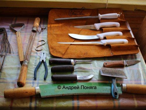 Ножи охотника за пушниной
