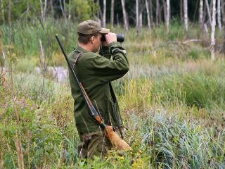Установлены сроки на добычу охотничьих ресурсов