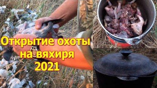 Открытие охоты на вяхиря 2021
