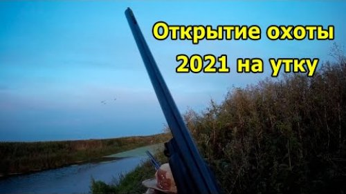 Открытие охоты на утку 2021