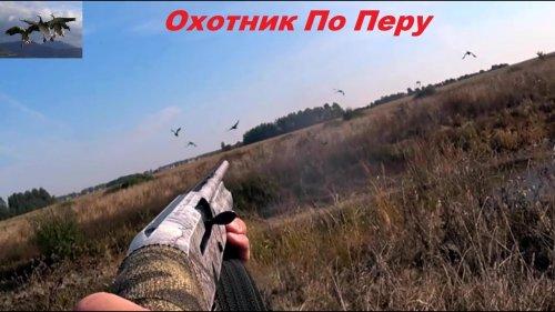 "Охота на утку 2021 "" Удачно подошел к стае"""