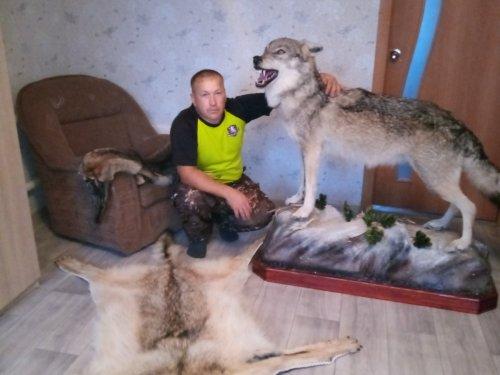 Волчки.