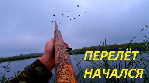 """Утки сели на голову!!! Перелёт начался. Охота на утку с манком. РОЗЫГРЫШ от """"ножевая Самойлова В.М"""""""
