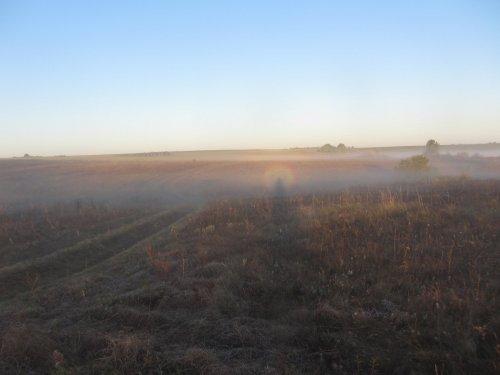 Утро, туман, охота начинается...
