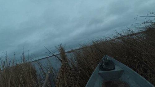 Охота на гуся-утку в октябре 2021-го.