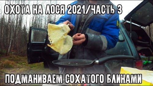 Охота на лося 2021/Блины на турбопечке/Тетерева подобрались к избе/Часть 3